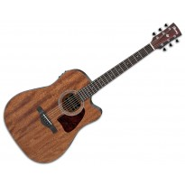 Ibanez AW54CE Artwood Dreadnought Guitar