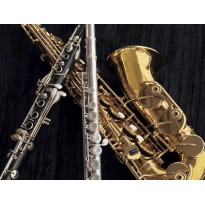 Brass & Woodwind