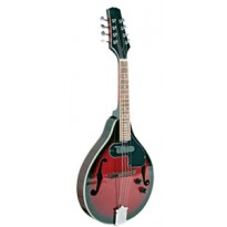Bryden Mandolin Electric.