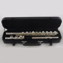 Fontaine FB105 C Flute and Case